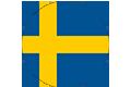 Курсове по шведски език